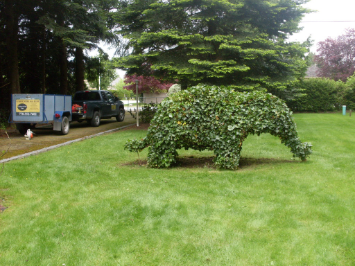 topiary animals, hedge trimming, shrub shaping
