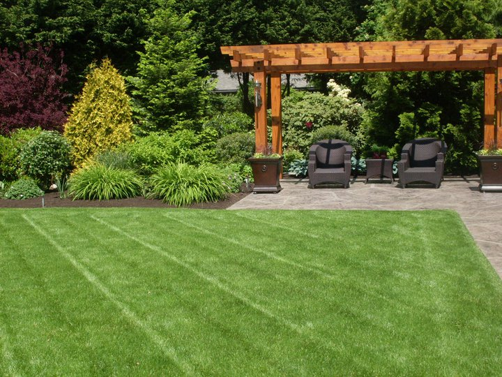 lawn care, mowing, grass cutting, garden care, gardening, gardeners